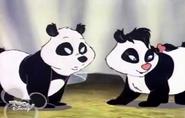 Pandasontheirfeet