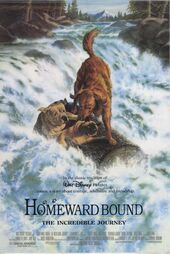 Homeward Bound - The Incredible Journey Poster