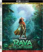 Raya and the Last Dragon 4K.jpg