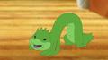 Sperk the caterpillar