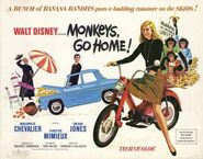 Monkey's Go Home Banner