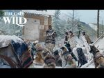 The Call of the Wild - Journey to Dawson Clip - 20th Century Studios