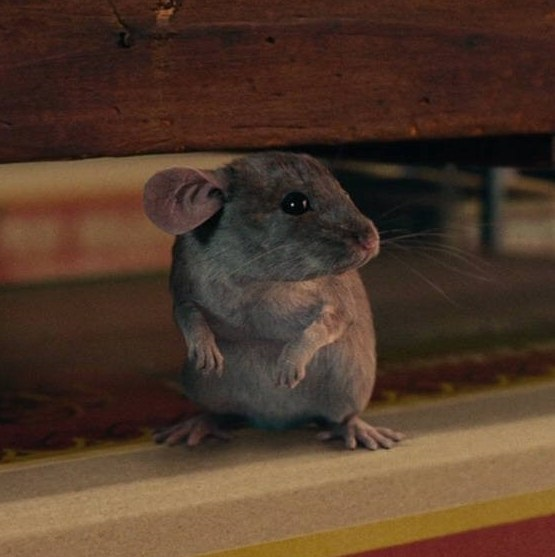 Mouse King (The Nutcracker and the Four Realms)