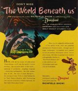 World Beneath Us Flyer