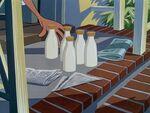 Bottles of milk on the steps