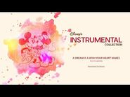 Disney Instrumental ǀ Neverland Orchestra - A Dream Is A Wish Your Heart Makes-2