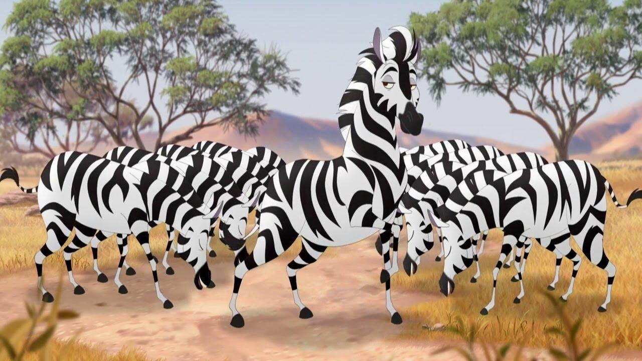 He's The Zebra Mastermind