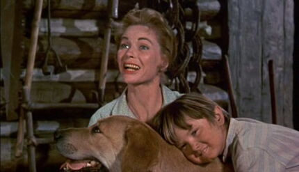 Old-yeller-disneyscreencaps.com-1352