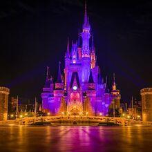 Cinderella-castle-tokyo-disneyland-shallow-pavement-night-sigma-35.jpg