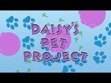 Daisy's Pet Project