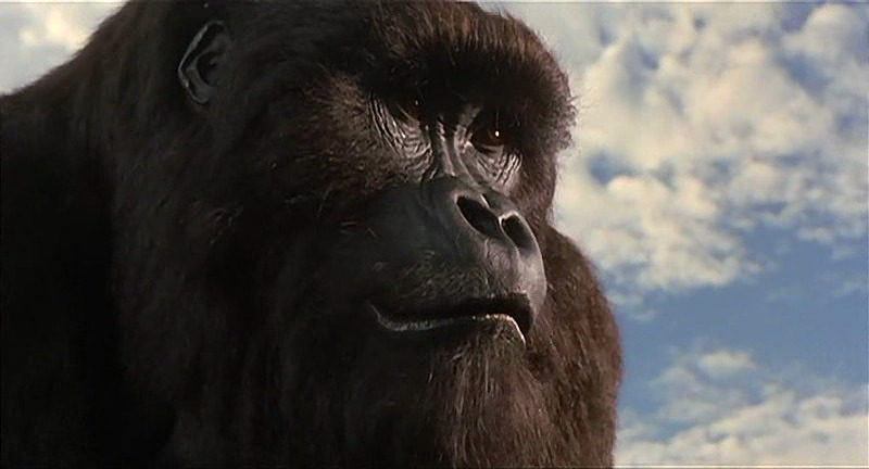 Mighty Joe Young (character)