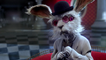 Once Upon a Time in Wonderland - 1x01 - Down the Rabbit Hole - Nervous White Rabbit.png