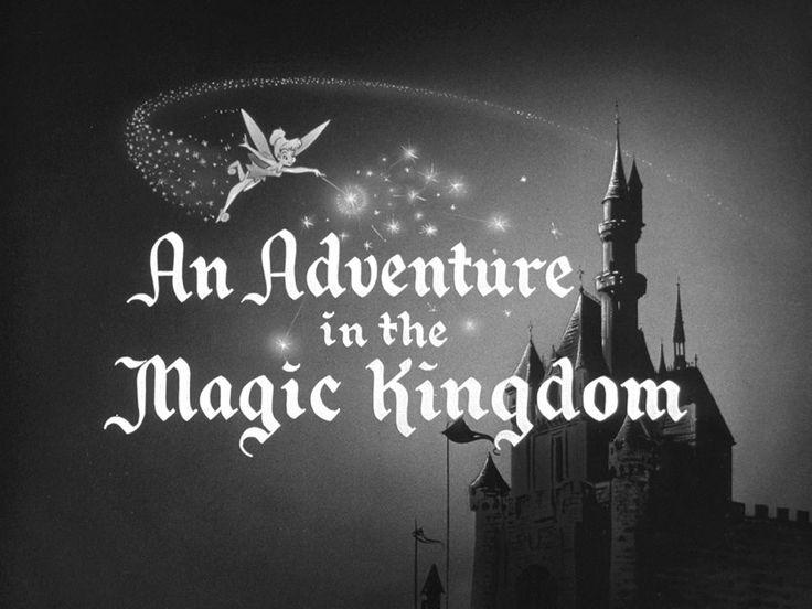 An Adventure in the Magic Kingdom