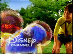 DisneyDogBath2003