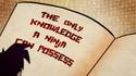 NinjaNomiconKnowledge012
