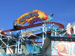 Primeval Whirl at Disney's Animal Kingdom Florida.jpg