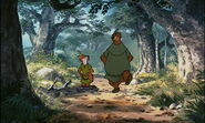 Robinhood018