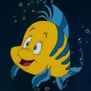 Profile - Flounder