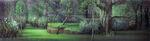 Sleeping Beauty Forest