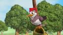 Woodpecker Tigger and Pooh