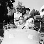 The Shaggy Dog 1959