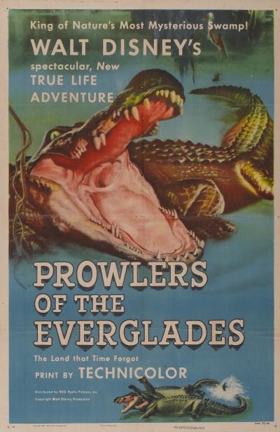 Predadores de Everglades