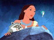 Pocahontas, Meeko and Flit