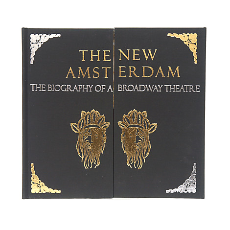 The New Amsterdam: The Biography of a Broadway Theatre Book