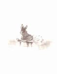 Bambi sketchbook 029