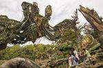 Pandora Landscape 02