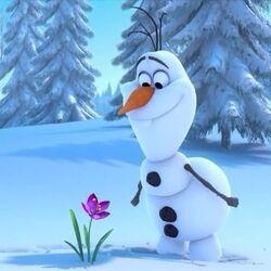 Olaf floare.jpg