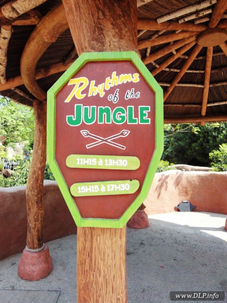 Rhythm of the Jungle