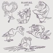 Hamuel concept 3