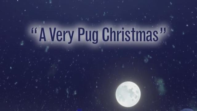A Very Pug Christmas