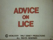 Advice on Lice