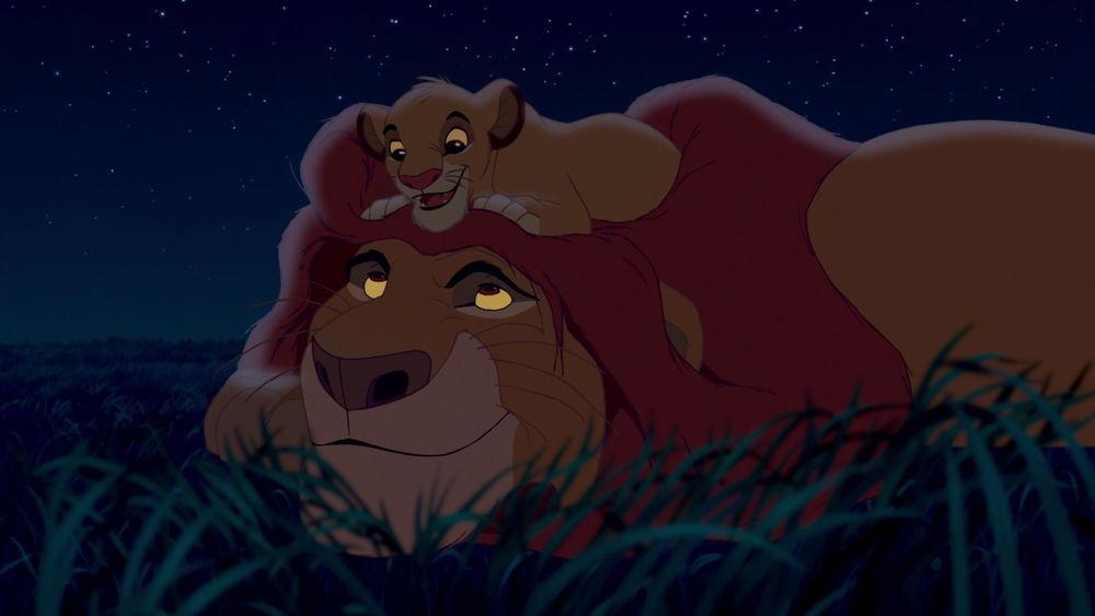 Simba/Relaciones
