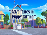 Adventures in Puppy-Sitting