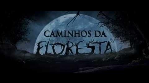 Caminhos da Floresta - Teaser Trailer