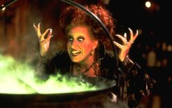 Disney-Magic Object Winifred Hocus-Pocus-1-.jpg