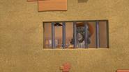 Wildcat McGraw behind bars