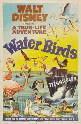 Water Birds FilmPoster.jpg