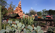 Big Thunder Mountain Railroad at Disneyland 2