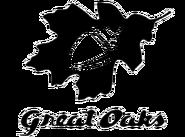 Great Oaks transparent logo