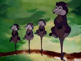 Possums
