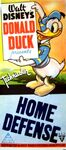 Donald home defense