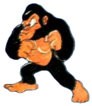 DTNES - Ape (Nintendo Power)