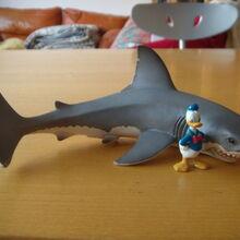 Paperino e lo squalo bianco.JPG