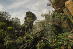 Pandora Landscape 05