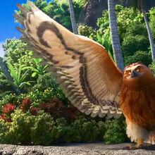 Moana Trailer Maui Bird.jpg