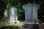 Master Gracey Grave